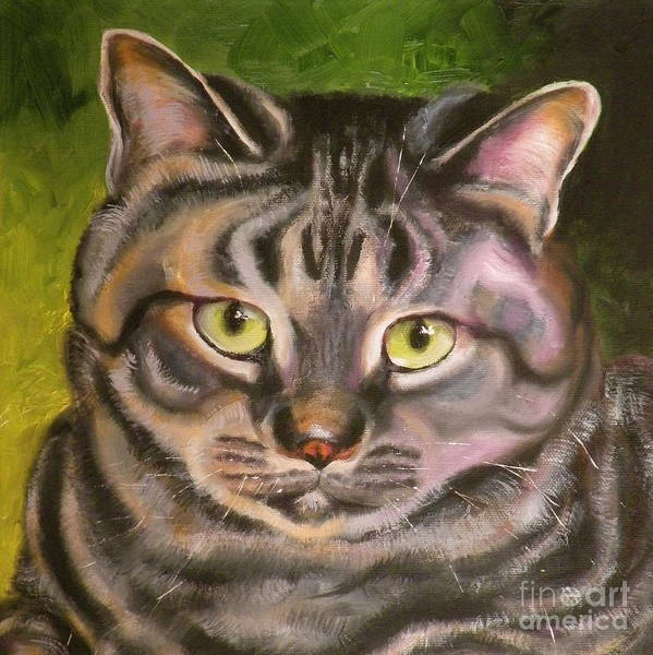 Cat Poster featuring the painting Im Your Man Tabby by Susan A Becker