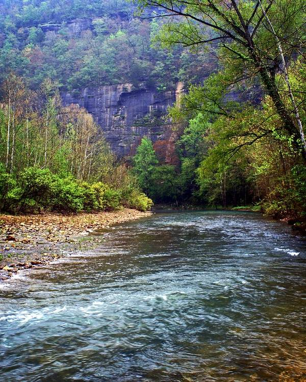 Buffalo National River Poster featuring the photograph Buffalo River Downstream by Marty Koch