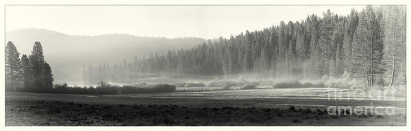 Yosemite Poster featuring the photograph Misty Morning In Yosemite Sepia by Jane Rix