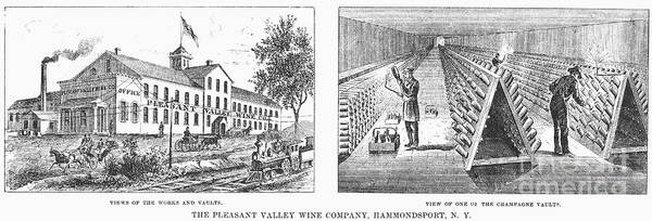 1878 Poster featuring the photograph New York: Winery, 1878 by Granger