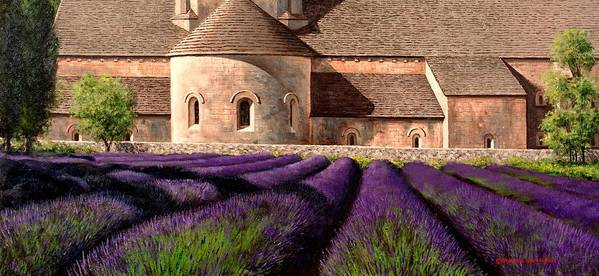 Senanque Abbey Poster featuring the painting Abbey Lavender by Michael Swanson