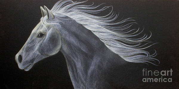 Horse Poster featuring the painting Horse by Susan Clausen