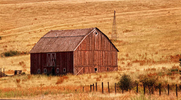 Barn Poster featuring the photograph Harvest Barn by Mary Jo Allen