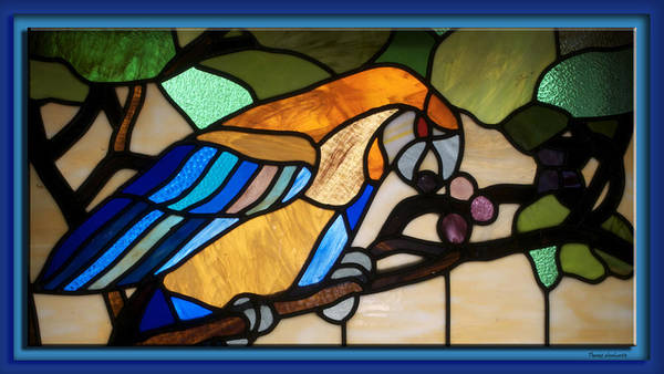 Glass Art Poster featuring the photograph Stained Glass Parrot Window by Thomas Woolworth