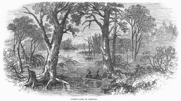 1869 Poster featuring the photograph Arkansas: Sunken Lands by Granger