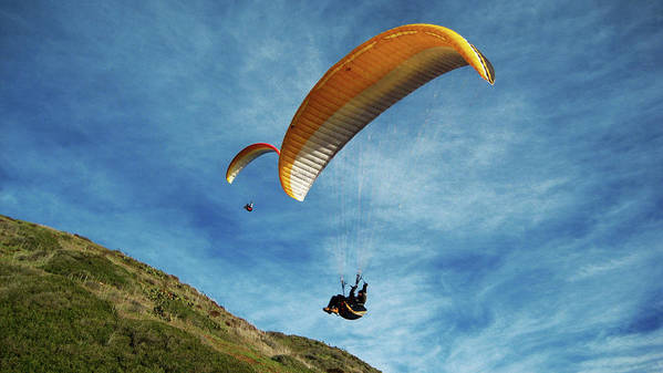Gliders Poster featuring the photograph High Flyers by Lorraine Devon Wilke