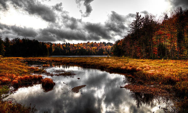 Adirondack's Poster featuring the photograph The South End Of Cary Lake by David Patterson