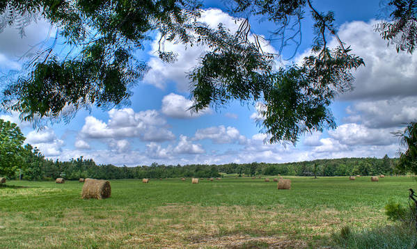 Hay Poster featuring the photograph Hay Field In Summertime by Douglas Barnett