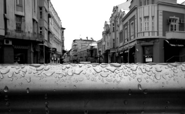 Rain Poster featuring the photograph Raindrops by Lucy D