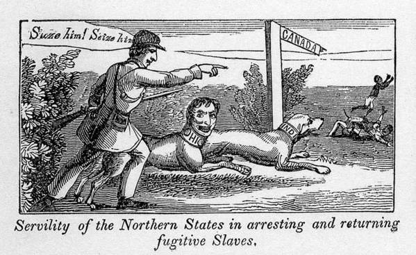 History Poster featuring the photograph Abolitionist Political Cartoon by Everett