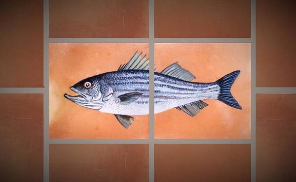 Fish On Hand Made Terracotta Tiles Poster featuring the painting Striped Bass by Andrew Drozdowicz