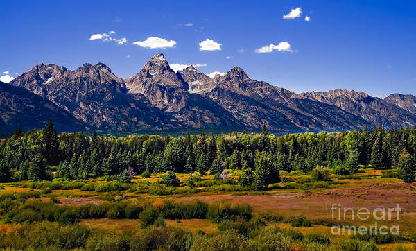 Forest Poster featuring the photograph The Tetons II by Robert Bales