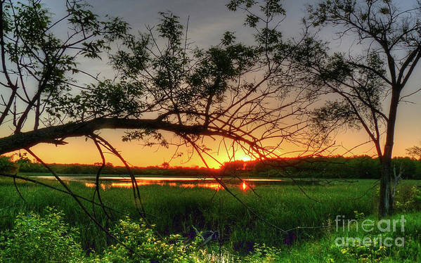 Sunset Poster featuring the photograph Fiery Swamp Sunset by Deborah Smolinske