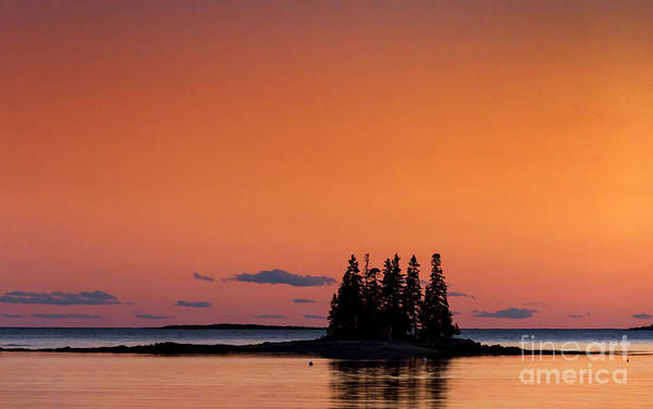 Maine Poster featuring the photograph Maine Coastal Island by John Greim