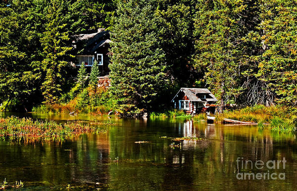 Idaho Poster featuring the photograph Johnny Sack Cabin II by Robert Bales