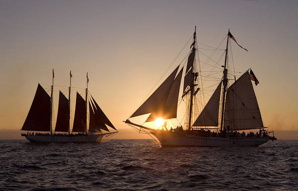 Tall Ships Poster featuring the photograph Tall Ships At Sunset by Cliff Wassmann