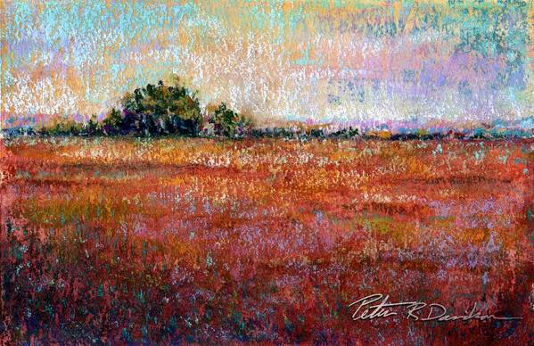 Pastel Poster featuring the pastel Quiet Over The Field by Peter R Davidson