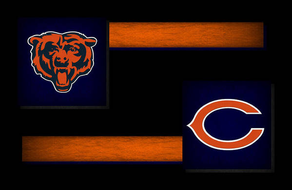 Bears Poster featuring the photograph Chicago Bears by Joe Hamilton