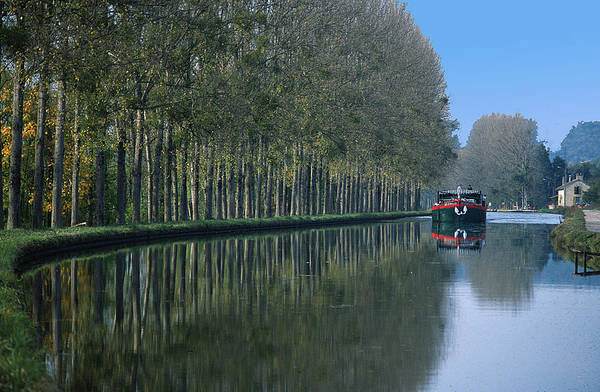 Trees Poster featuring the photograph Barge On Burgandy Canal by Carl Purcell