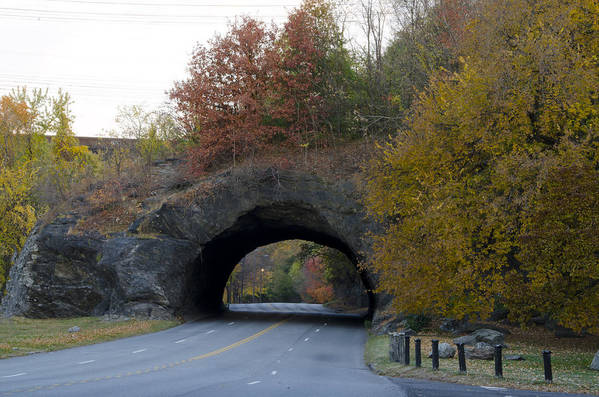 Kelly Poster featuring the photograph Kelly Drive Rock Tunnel In Autumn by Bill Cannon