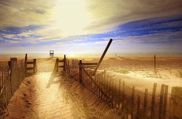 Beach Poster featuring the photograph Nauset Beach Early Morning by Dapixara Art