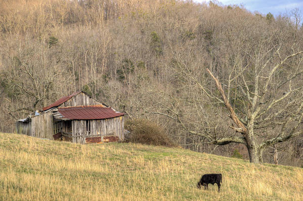 Barn Poster featuring the photograph Smoky Mountain Barn 10 by Douglas Barnett