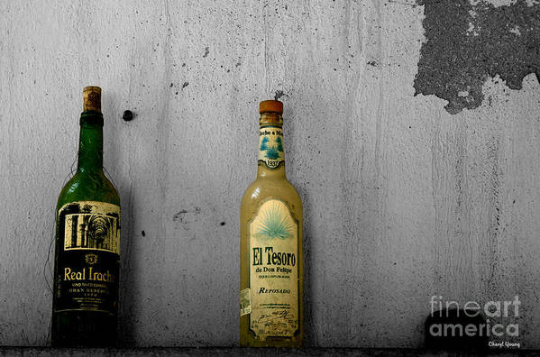 Tequila Poster featuring the photograph Tequila And Vino Tinto by Cheryl Young
