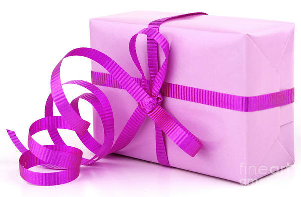 Gift Poster featuring the photograph Pink Gift by Blink Images
