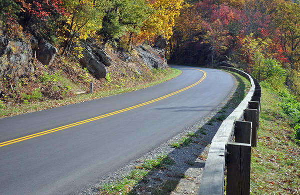 Blue Ridge Parkway Poster featuring the photograph Blue Ridge Parkway Autumn Road by Bruce Gourley