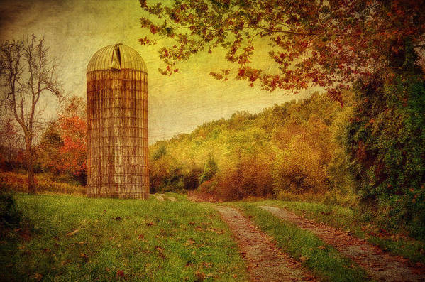 Silo Poster featuring the photograph Early Autumn by Kathy Jennings