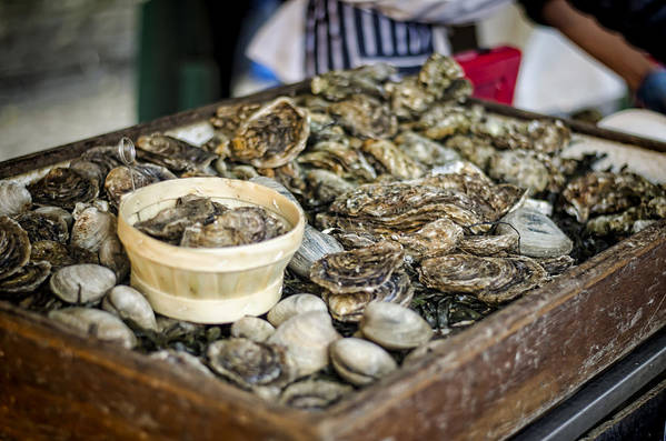 Oysters Poster featuring the photograph Oysters At The Market by Heather Applegate
