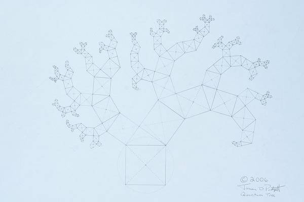 Fractal Tree Poster featuring the drawing Quantum Tree by Jason Padgett