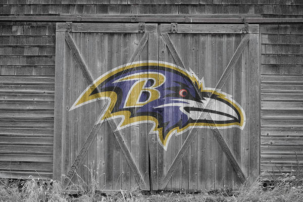 Ravens Poster featuring the photograph Baltimore Ravens by Joe Hamilton
