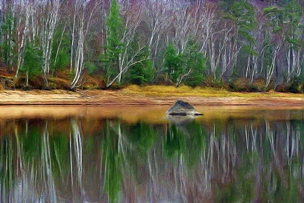 Landscape Image Of A Shoreline Of A River With Pine And Birch Trees Reflecting In The Water Poster featuring the photograph Birch Shoreline by Pat Now