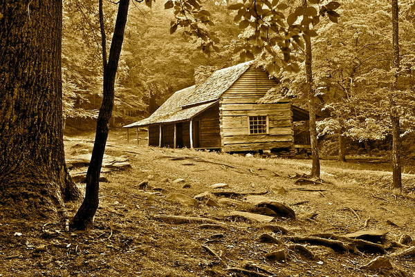 Smoky Poster featuring the photograph Smoky Mountain Cabin by Frozen in Time Fine Art Photography