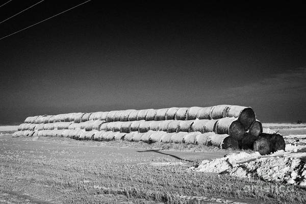 Stack Poster featuring the photograph stack of frozen snow covered hay bales in a field Forget Saskatchewan Canada by Joe Fox