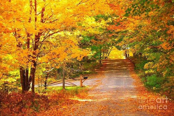 Autumn Poster featuring the photograph Autumn Road Home by Terri Gostola