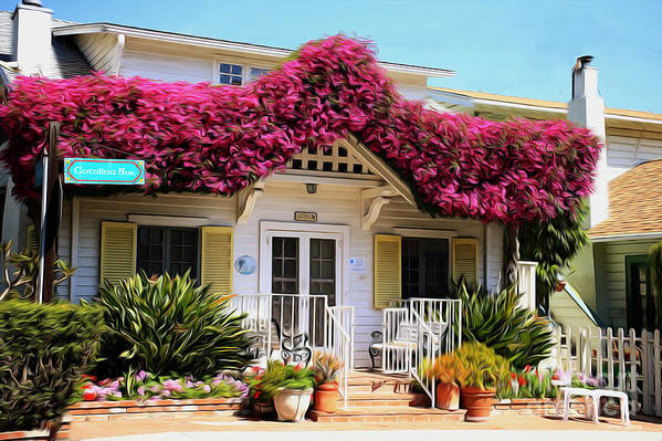 Bougainvillea Poster featuring the photograph Bougainvillea House by Cheryl Young