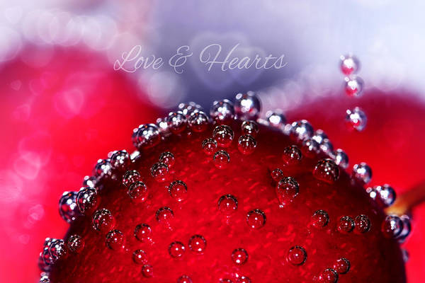 Cherry Poster featuring the photograph Cherry Fizz Hearts With Love by Tracie Kaska