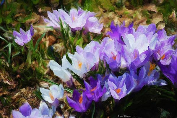 Floral Poster featuring the digital art Crocus Fantasy by David Lane