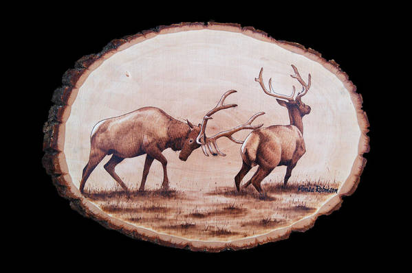 Elk Poster featuring the pyrography Dominance by Minisa Robinson