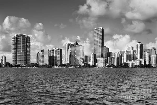 Downtown Poster featuring the photograph Downtown Miami by Eyzen Medina