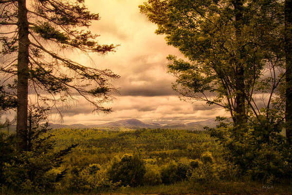 Appalachian Trail Poster featuring the photograph Early Spring Rain by Bob Orsillo