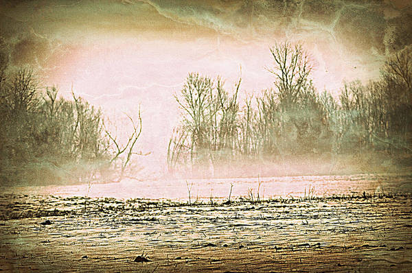 Landscape Poster featuring the photograph Fog Abstract 1 by Marty Koch