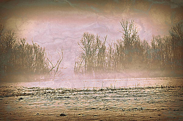 Landscape Poster featuring the photograph Fog Abstract 2 by Marty Koch