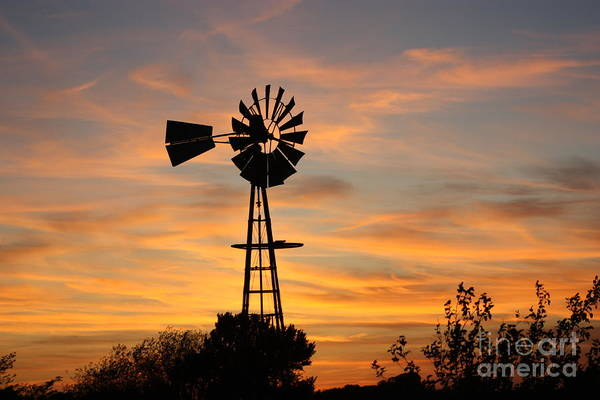 Windmill Poster featuring the photograph Golden Windmill Silhouette by Robert D Brozek