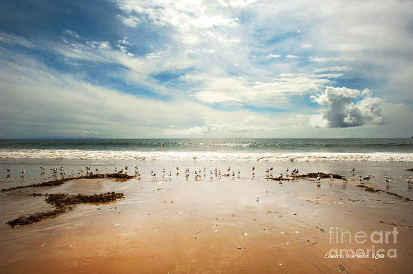 Gaviota Poster featuring the photograph It Was A Sunny Day At The Beach From The Book My Ocean by Artist and Photographer Laura Wrede