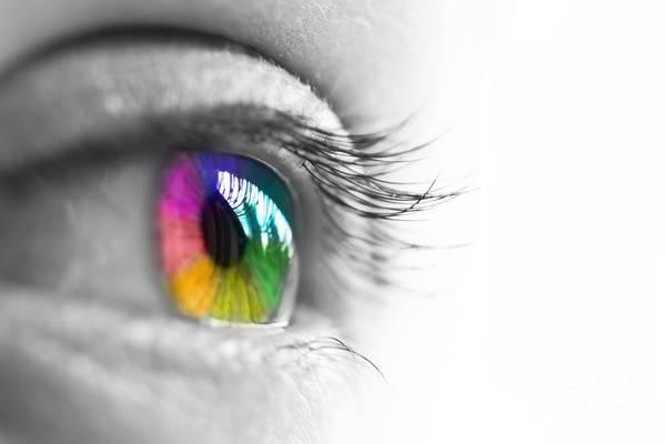 Rainbow Poster featuring the photograph La Vie En Couleurs by Delphimages Photo Creations