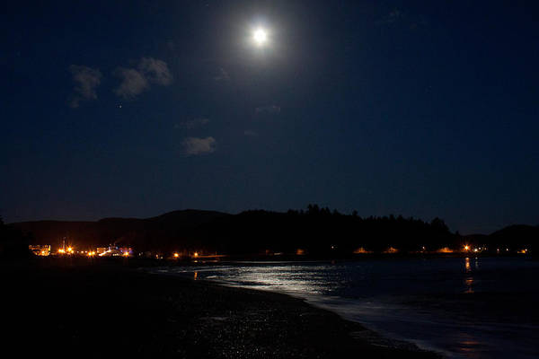 Lincoln Poster featuring the photograph Lincoln City Moonlight by John Daly