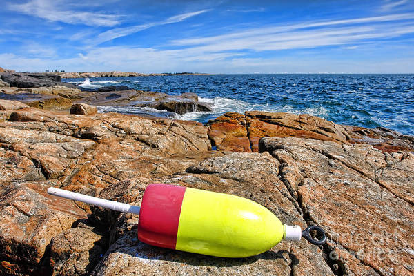 Buoy Poster featuring the photograph Maine Coast by Olivier Le Queinec